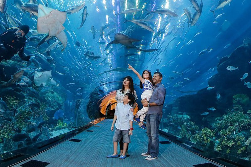 activités pour les enfants à Dubaï : Dubai Aquarium and Underwater Zoo